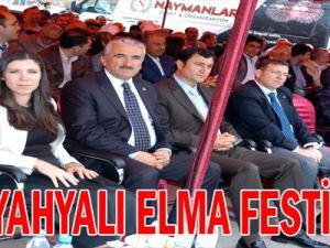 1&#39Cİ YAHYALI ELMA FESTİVALİ