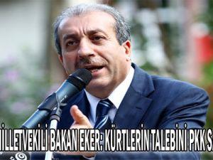 Diyarbakır Milletvekili, Bakan Eker: Kürtlerin talebini PKK sabote ediyor