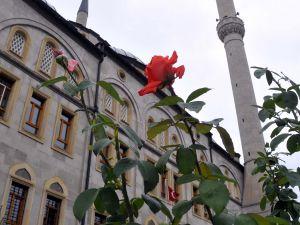 KAYSERİ&#39NİN EN GÜZEL CAMİSİ ERTUĞRUL GAZİ CAMİSİ SEÇİLDİ