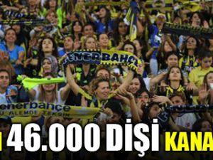 46 Bin Dişi Kanarya Kadıköyü İnletti