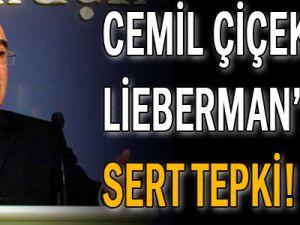 Lieberman&#39ın PKK planına sert tepki!