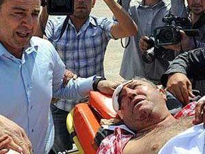 Milletvekilinin Ağabeyine Domuz Saldırdı