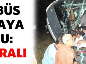 Otobüs tarlaya uçtu: 48 yaralı