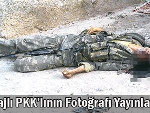 Ölen Pkk&#39lıların Fotorofları Yayınlandı