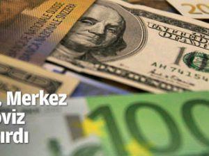 Borsalar toparlandı, Merkez Bankası döviz satışını artırdı
