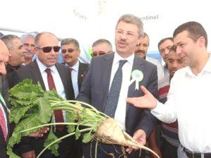 KAYSERİ ŞEKERDEN FESTİVAL