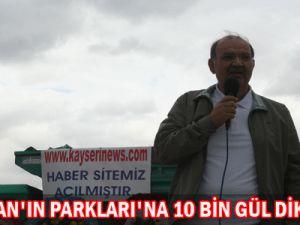 KOCASİNAN&#39IN PARKLARI&#39NA 10 BİN GÜL DİKİLDİ