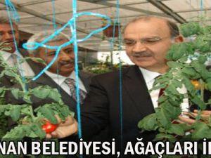 Kocasinan Belediye Başkanı Bekir Yıldız