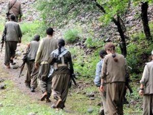 PKK ERZAK TOPLUYOR