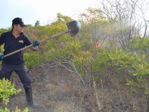 Kayseri İnecik'te Korkutan Yangın
