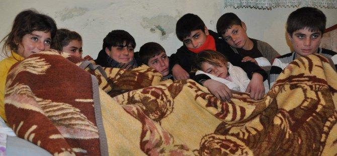 Kayseri'de bir evin bodrum katında yaşam mücadelesi