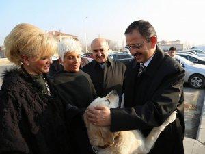 """YENİ BARINMA EVİ YAPILACAK"""