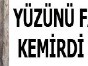YÜZÜNÜ FARELER KEMİRDİ BANKADAN 300 BİN TL PARASI ÇIKTI