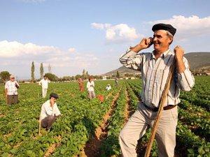 2014 yılında Kayseri'deki çiftçiler için, 400 milyon lira civarında kredi