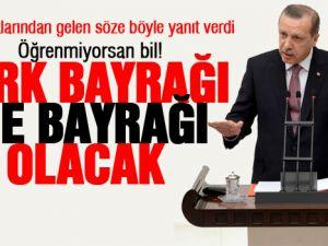 Başbakan Erdoğan'dan BDP'ye bayrak tepkisi-video