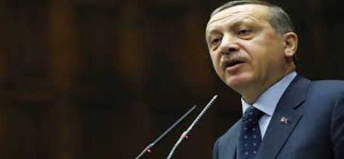 Erdoğan 'Bir tane dikili ağaçları yok'