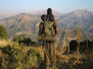 PKK'nın korkunç yaz planı! 9 ilçede...