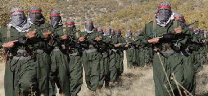 PKK'dan Yeni Örgüt!
