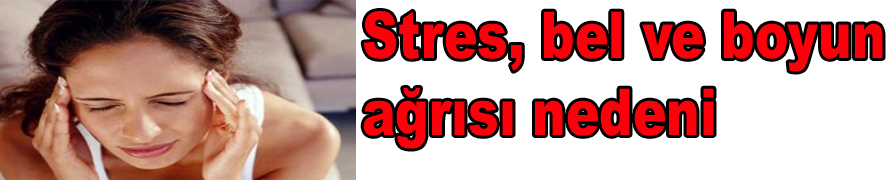 Stres, bel ve boyun ağrısı nedeni