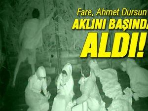 Survivor'da Ahmet dursun fareyi görünce çıldırdı-video