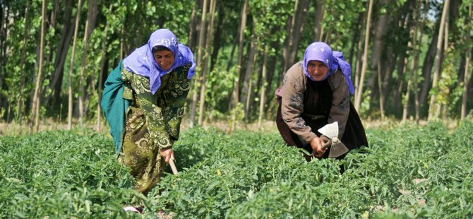Kayseri'de 9 Kişi Sobadan Sızan Gazdan Zehirlendi