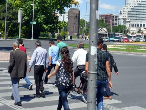 Kayseri'nin en İşlek yerinde trafik lambası üstüne yuva yapan Kumru