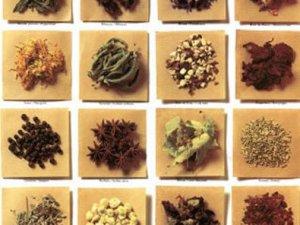 Sağlık Bakanlığı'ndan zararlı tıbbi bitkiler uyarısı