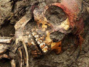 Kayseri'de Piknik Yaparken Kafatası Buldular