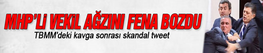 MHP'li Sinan Oğan: 60 AK it bana saldırdı
