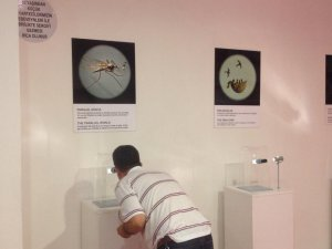 Mikro minyatür sergisi Forum Kayseri'de açıldı