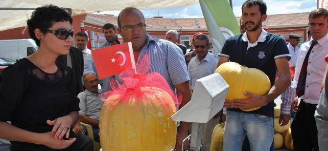 TOMARZA'DA 18 KİLOLUK KABAK GÖRENLERİ ŞAŞIRTTI