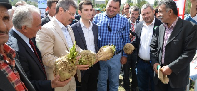 Yeşilhisar'da Pancar Festivali düzenlendi