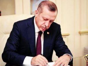 Başbakan Erdoğan 'ın PKK hakkında sarf ettiği sözlerin sırrı