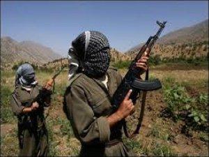 PKK'LILAR KÖY BASARAK İKİ KİŞİYİ KAÇIRDI