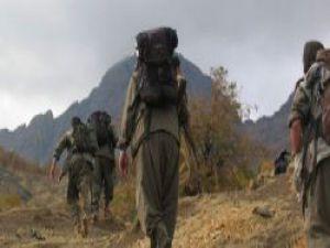 Demirtaş: PKK'lıların Yüzde 80'i Hala İçeride