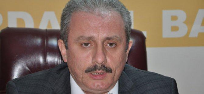 Şentop: 'Kürtlerin en büyük partisi AK Parti'dir'