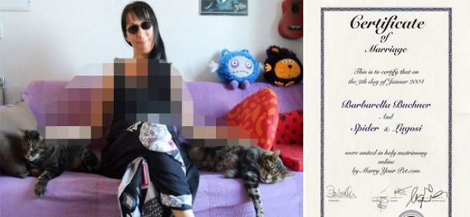 Terk edilen kadın iki kedisiyle evlendi