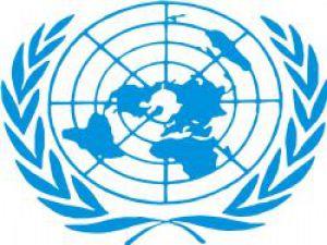 Birleşmiş Milletler Türkiye'yi Uyardı