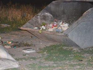 Kayseri'de Maydonoz Bahçesinde Yatan Köpeği Vurdu