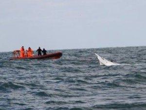 700 kaçak göçmen taşıyan tekne battı