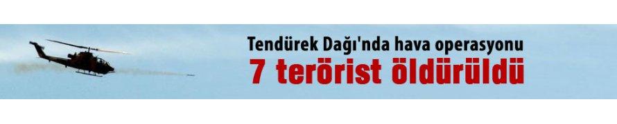 Tendürek Dağı'nda 7 terörist etkisiz hale getirildi