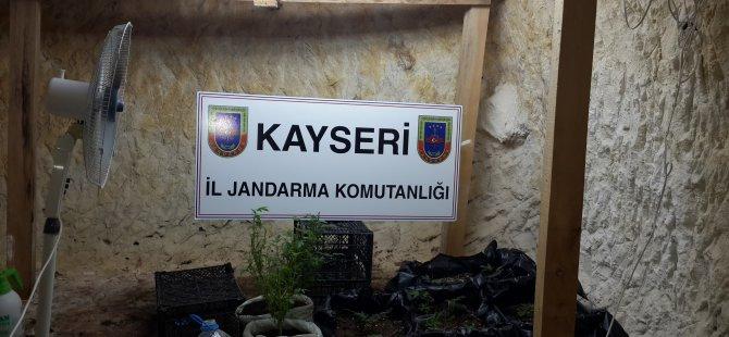 GESİ'DE MAĞARADA KENEVİR ÜRETİMİ