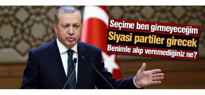 Cumhurbaşkanı Erdoğan'dan o eleştirilere cevap