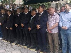 GÜL'E KAYSERİ'DE BÜYÜK İLGİ