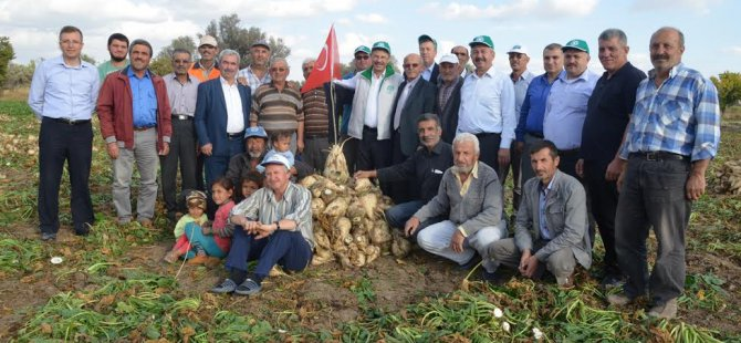 Kayseri Şeker çiftçileri Hasat günleri coşkusu yaşıyorlar