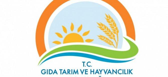 Kayseri'de Gıda sahtecileri açıkladı