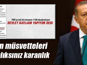 Cumhurbaşkanı Erdoğan'dan akademisyenlere sert sözler