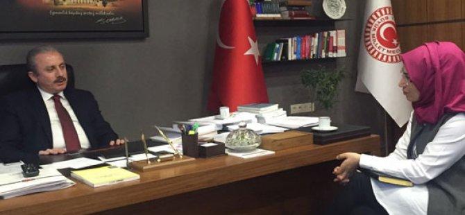Türkiye'yi nasıl bir Başkanlık Sistemi bekliyor? Mustafa Şentop anlattı