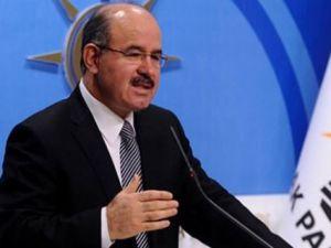 AK Parti Genel Başkan Yardımcısı  Çelik: