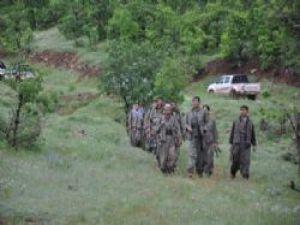 Silah Bırakan PKK'lıların Yeni Fotoğrafları